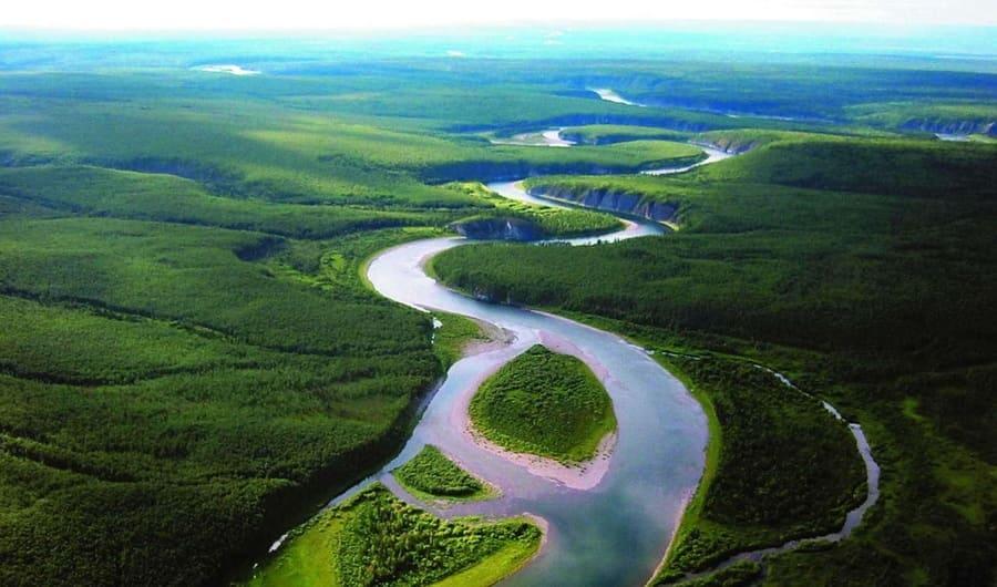 Первобытный лес Коми