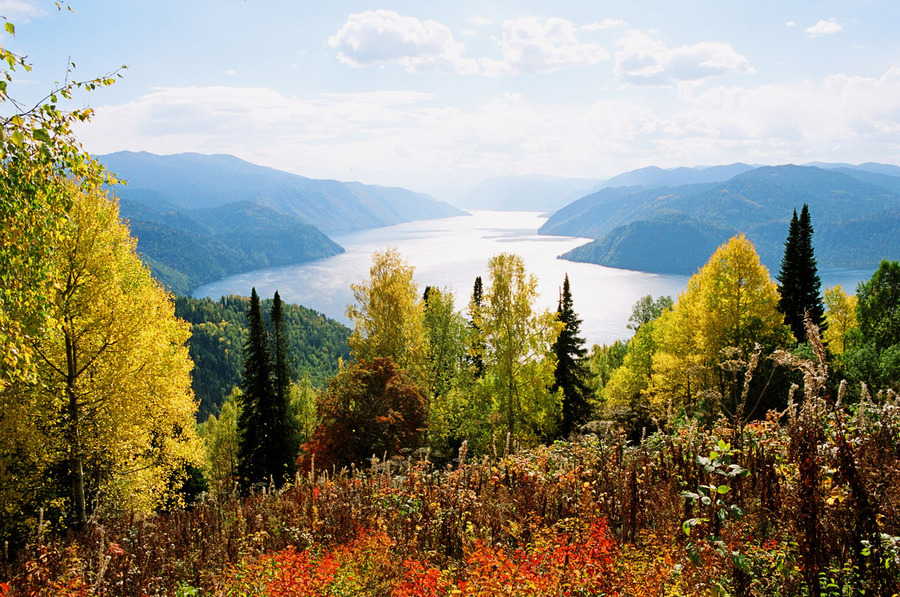Алтайский государственный природный биосферный заповедник