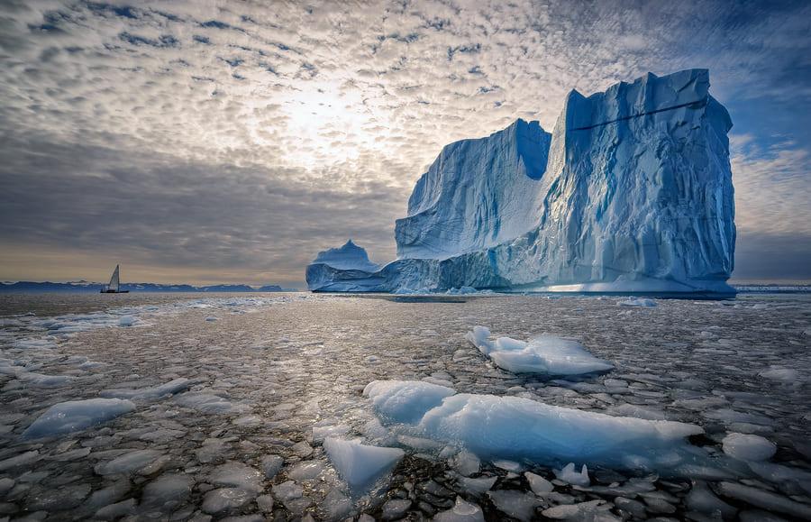 Отличия Арктики от Антарктики